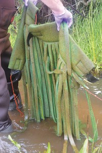 waterdefense2-200x300